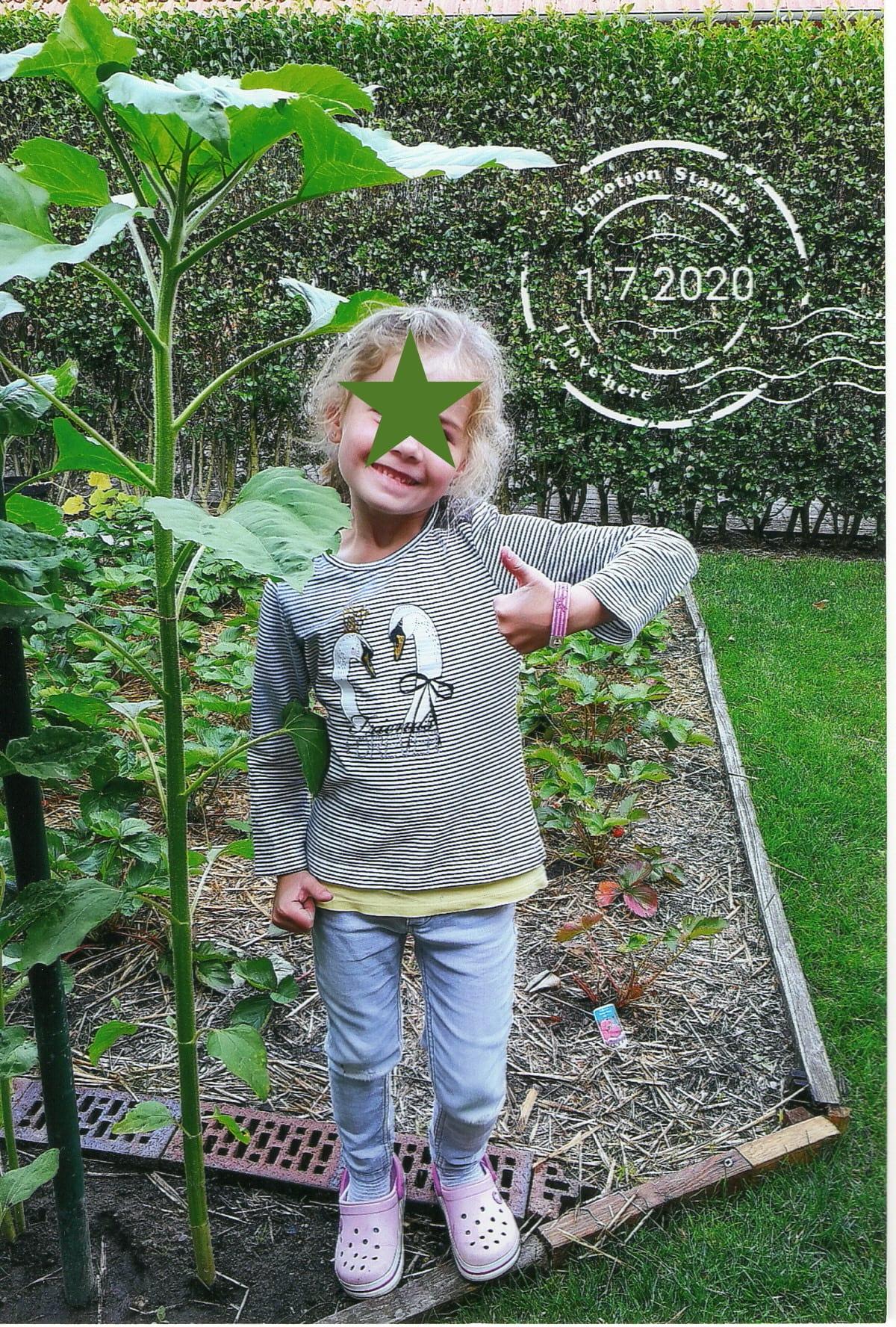 ..Emily & ihre Sonnenblume..